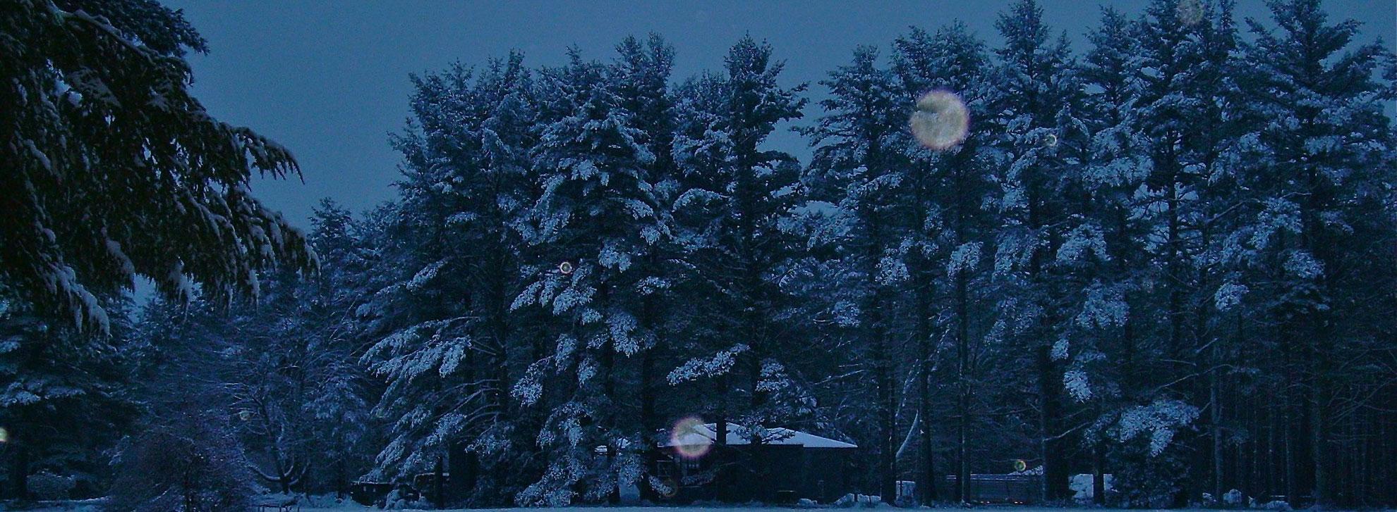 snowy-night_web
