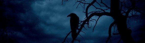 The Dark Night of Juan Carlos